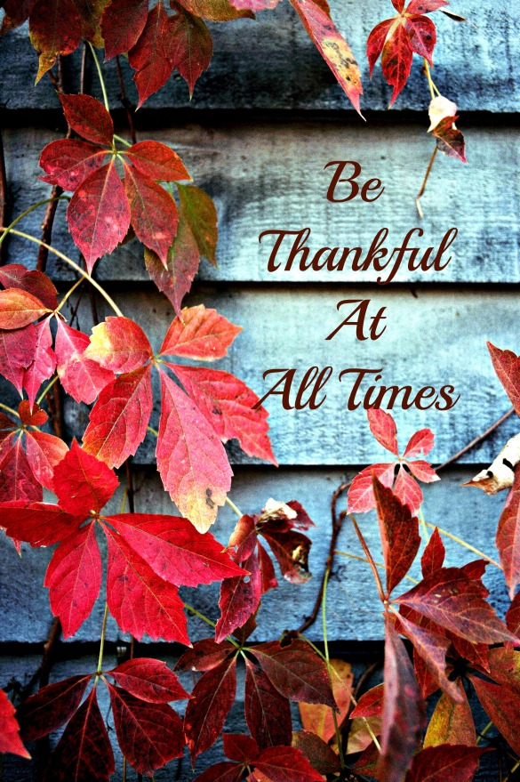 Being Thankful With A Teen in Crisis - Anchor Of Promise.jpg
