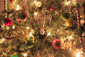 O Christmas Tree O Christmas Tree - Anchor Of Promise